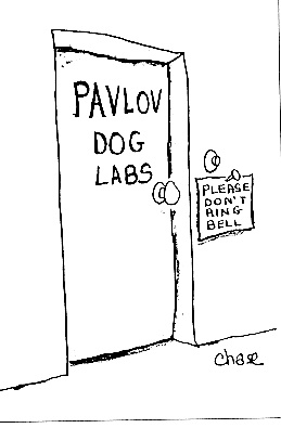 Pavlov dog labs - Please don't ring bell