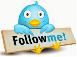 Follow me at Twitter