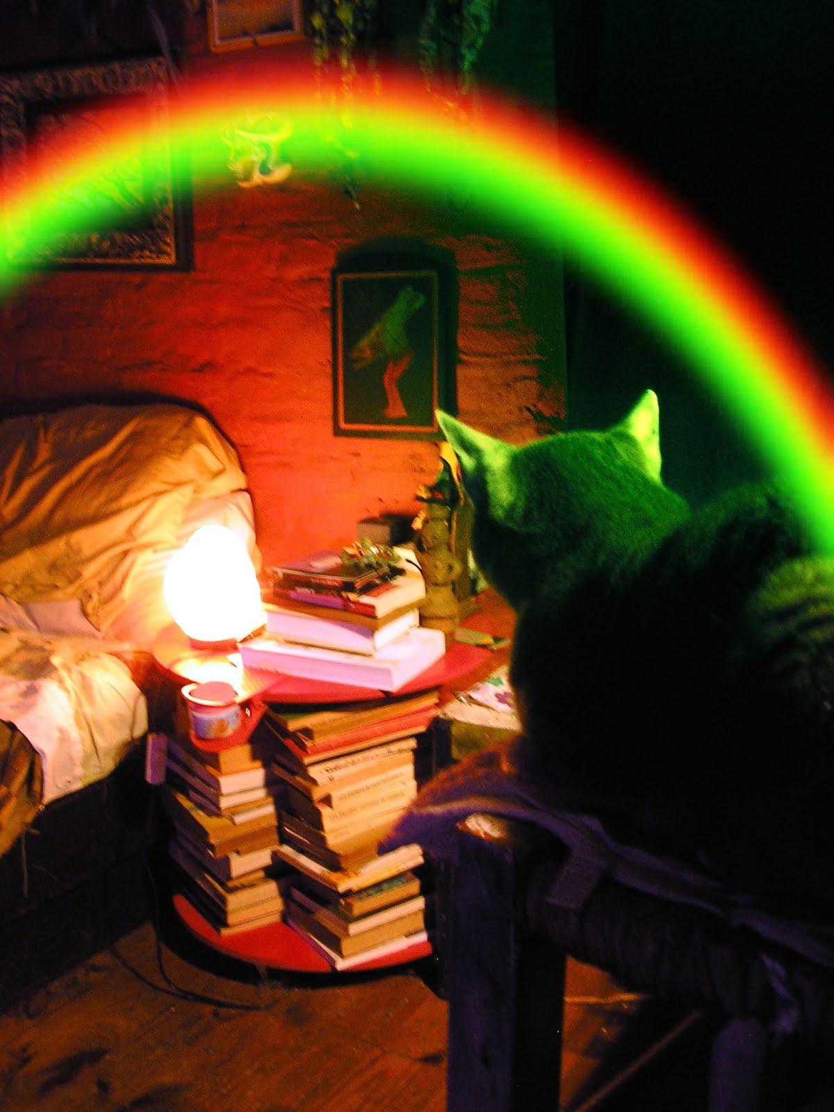 Hugo, y el arcoiris