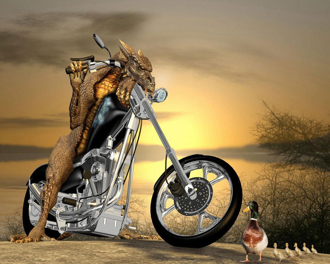 http://2.bp.blogspot.com/-5McKxCr-x60/UNRu0SjOINI/AAAAAAAAB8k/dtes9p_dgZs/s1600/funny-wallpaper-free-download-1.jpg