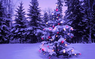Xmas snow Tree images
