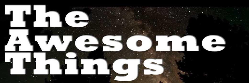 The Awesome Things
