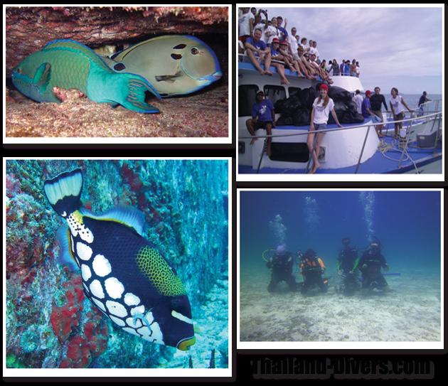 thailand diving,phuket thailand,scuba diving,thai,diving,divers,dive,scuba,phuket,thailand,similan islands