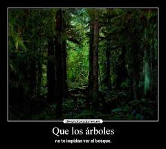 Que el árbol no impida ver el bosque