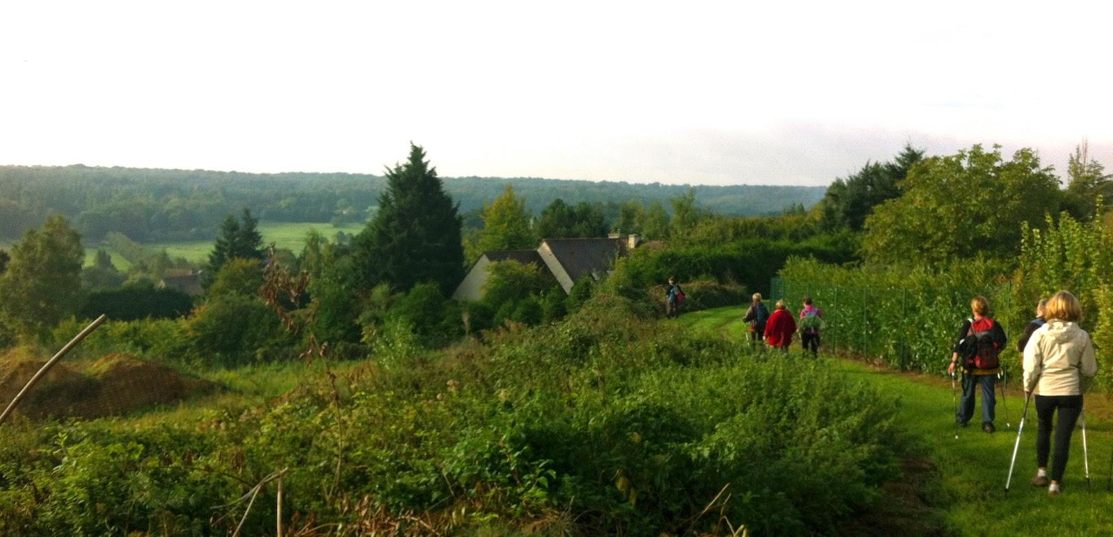 Pratiquer la Marche Nordique en Yvelines
