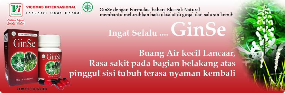 GINSE