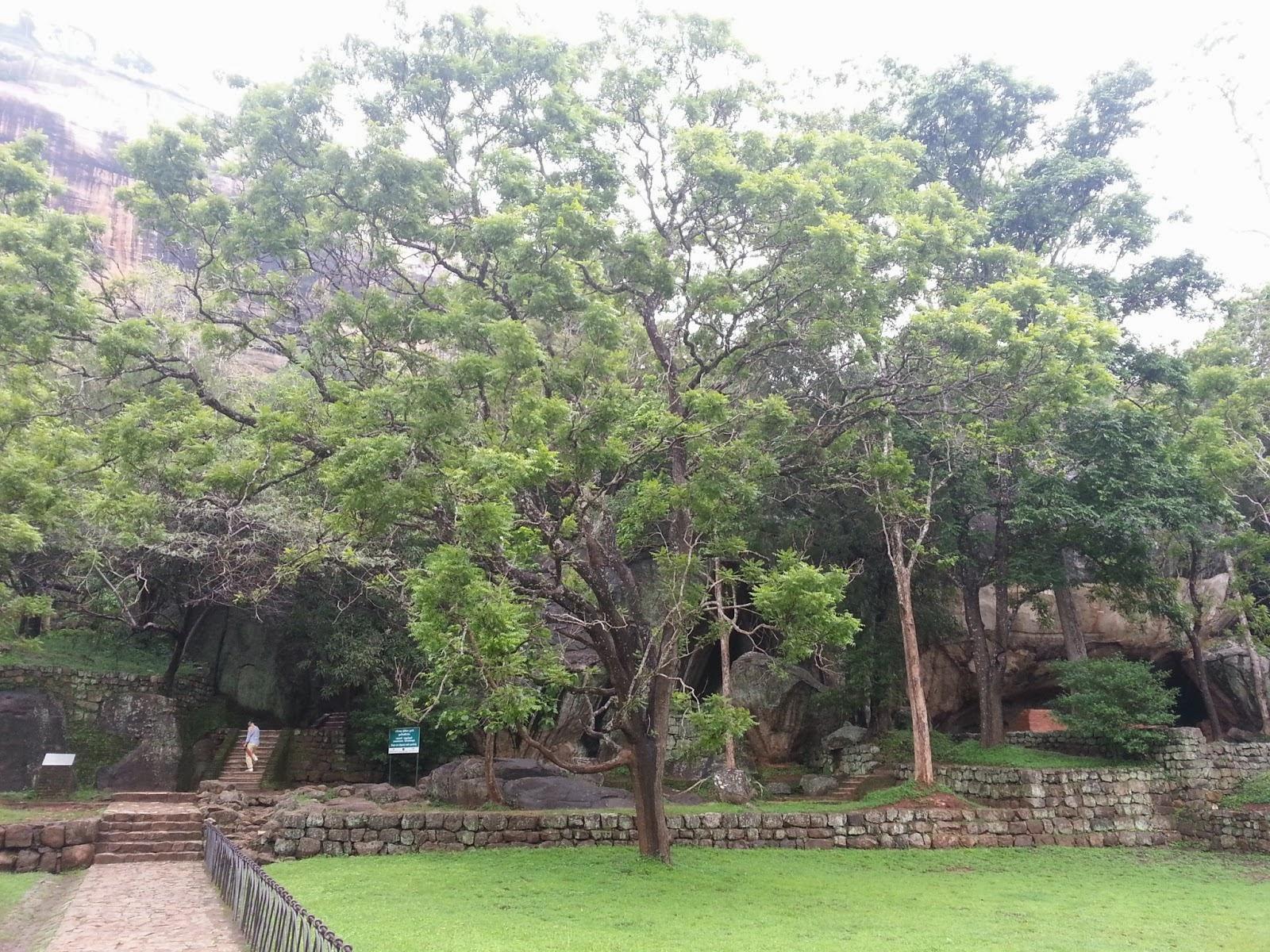 Сигирия сады на террасах, Шри-Ланка, каменная дорога, гигантские валуны, арка-вход каменная