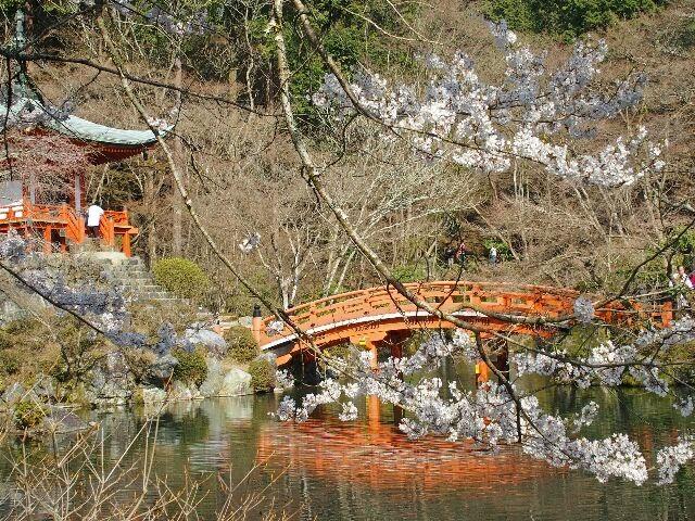 弁天堂の池。