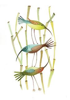 kolibrik erdőben, egymáson állnak, hummingbirds in forest, reed forest