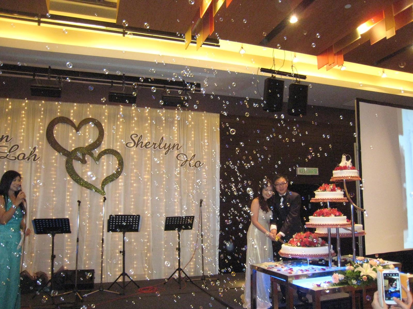 Penang Wedding Decoration Dquest Ventures 012 428 0578 Romantic Bubble Wedding Dinner Bubble