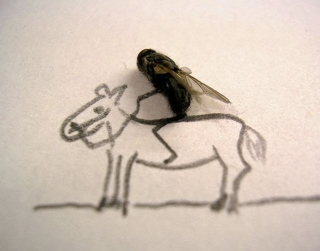 Surat Izin Memukul Lalat