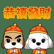 2 Shih Tzu Brothers-Chinese New Year