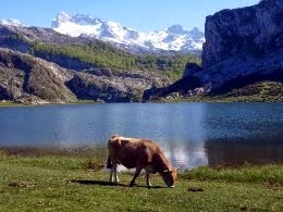 Sìmbolos d'Asturies