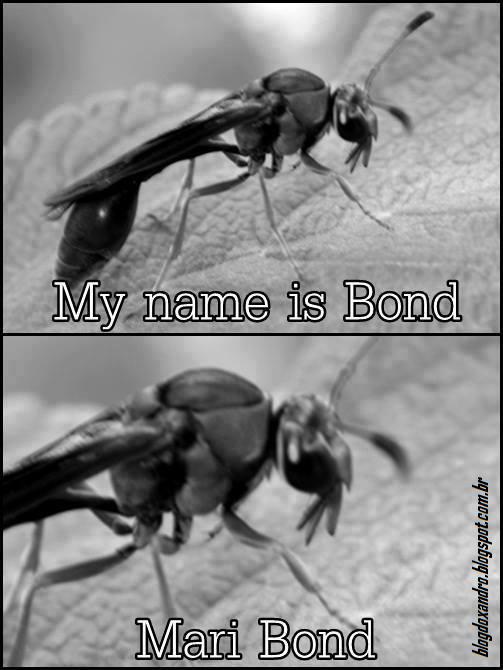 Bond.png (503×670)
