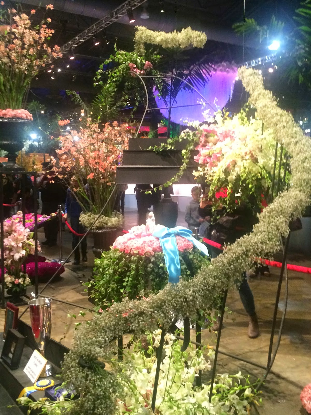 Disney Devoted Wordless Wednesday Philadelphia Flower Show and the Disney Pr