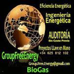 AUDITORIAS GRATIS BioGas