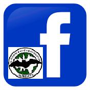 Facebook G.E.I