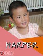 April 1st, 2017: Harper! (China)