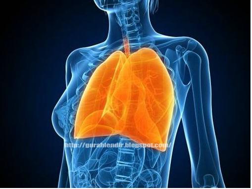 hronicheskiy-bronhit-traheit