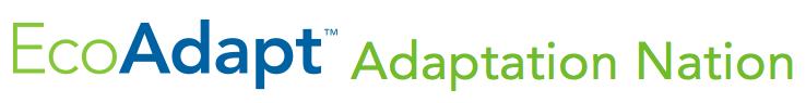 Adaptation Nation