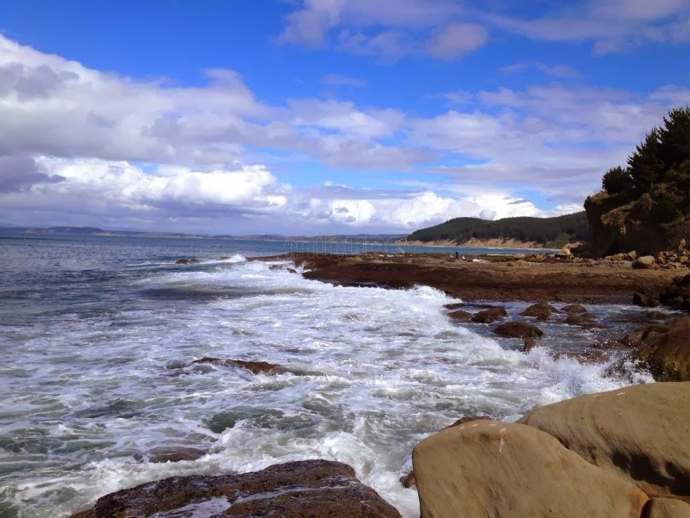 Punta Lavapié (ARAUCO)