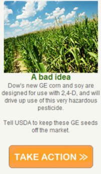 Stop Dow's 2,4-D Resistant Corn and Soy Seeds