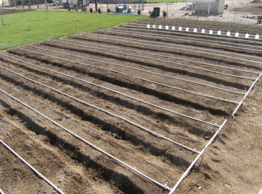 Backyard Farming Drip System Ideas