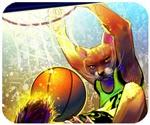 Game bóng rổ mèo