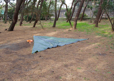 テントサイル設営