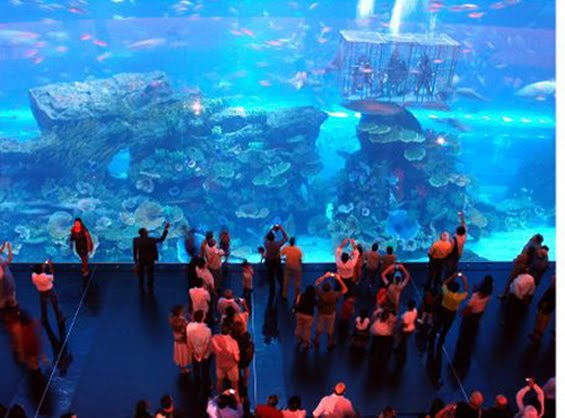 Dubai Aquarium In Dubai City; an underwater zoo beautifuly and ...
