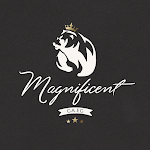 -: MAGNIFICENT :-