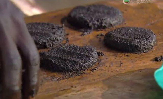 These Burgers Are Made of Flies and They Are Amazingly Nutritious