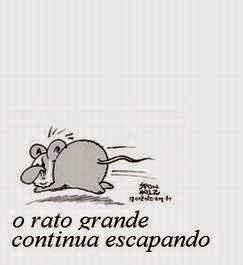 Rato grande