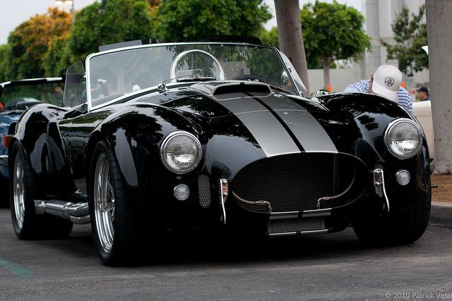 Shelby Cobra Car Cover