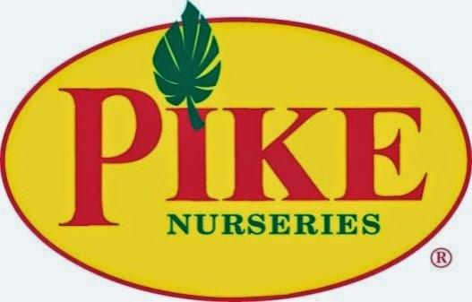 hydrangea, free class, Pike Nurseries, garden, gardening, plants, Georgia, Atlanta