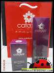 Catalyst Hair Treatment Series