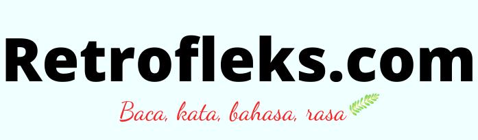 RETROFLEKS
