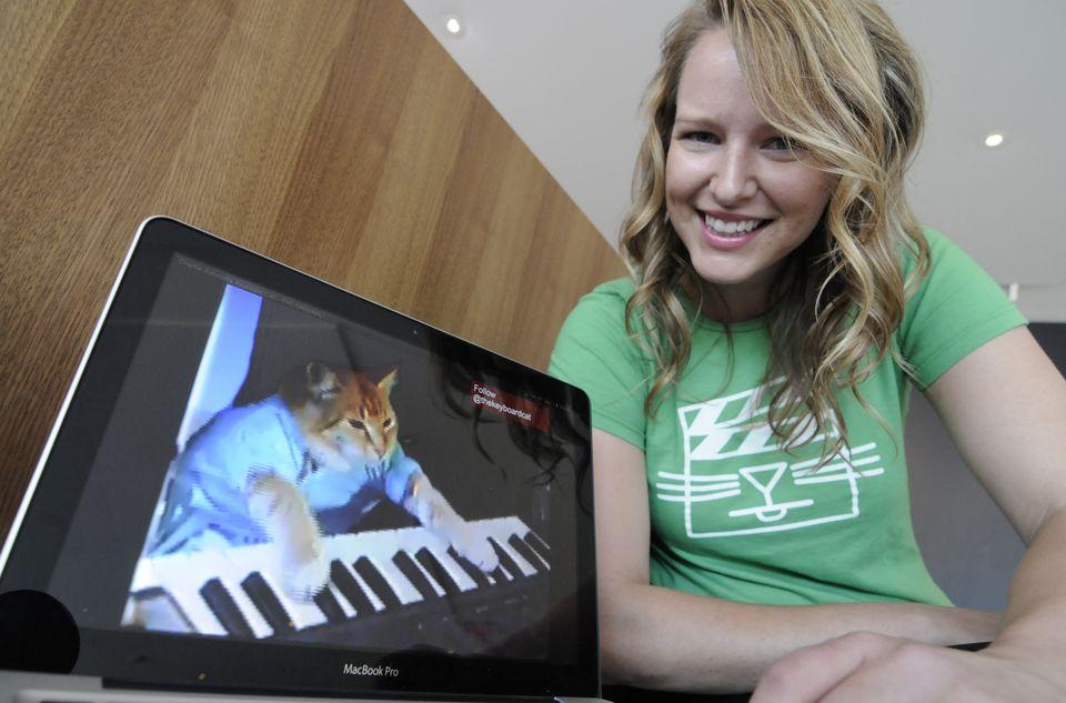 Internet Cat Video Film Festival: Первый в мире фестиваль видео с котами
