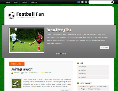 Football Fan Blogger Theme