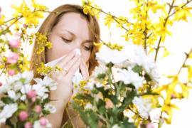 Sfaturi pentru alergici