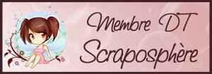 DT Scraposphère