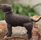 http://www.canadianliving.com/crafts/knitting/how_to_knit_a_labrador_retriever.php