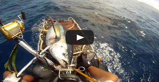 Fishing Kayak Tuna