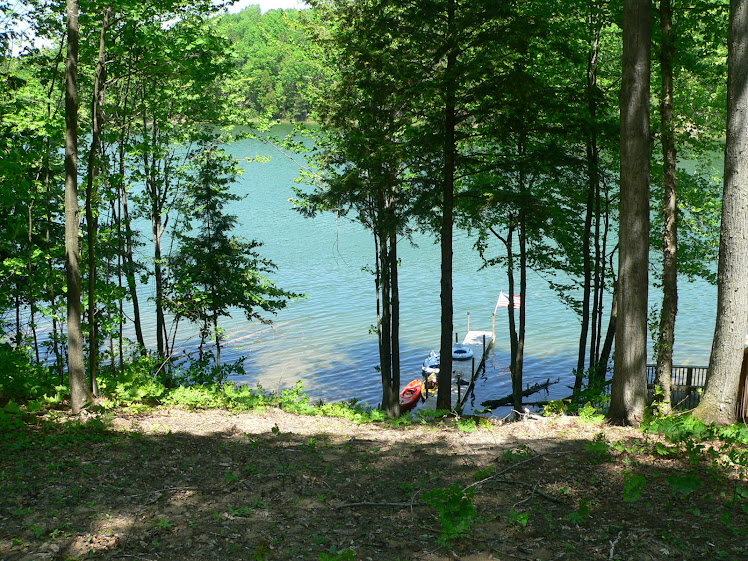 May 2011 - view from the deck to the lake