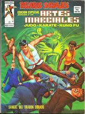 Artes Marciales 9
