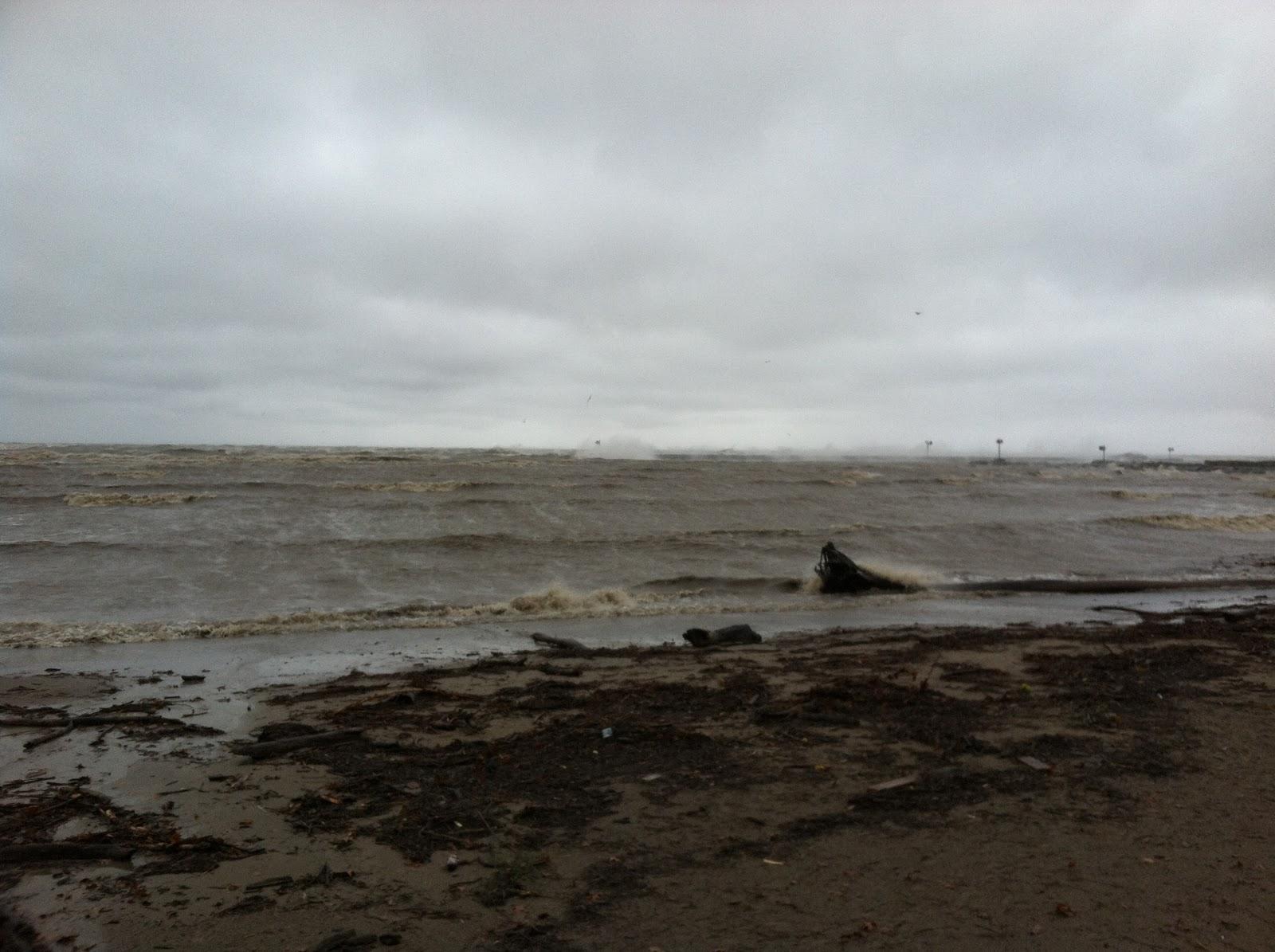 Lake Erie Walleye Fishing Reports October 2012