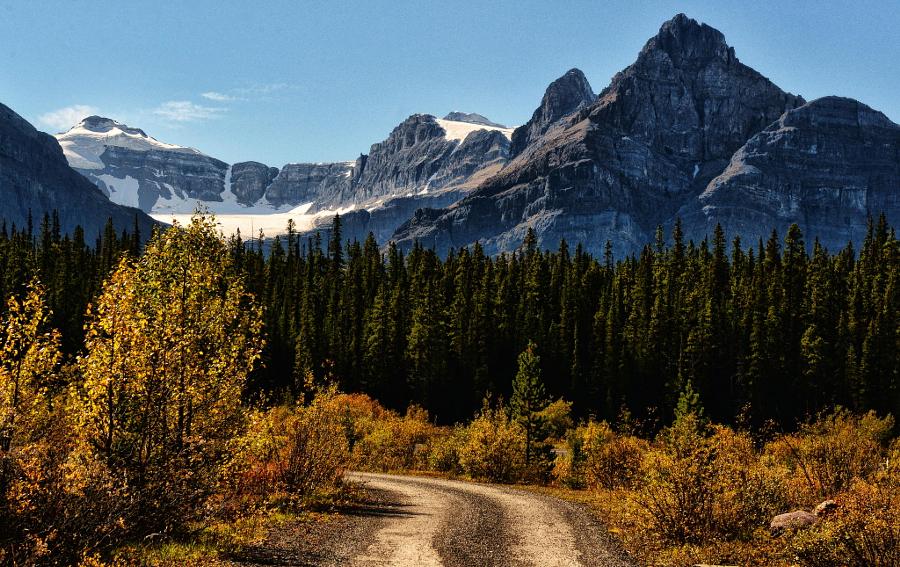 Let 39 s travel the world banff national park for Banff national park cabin rentals