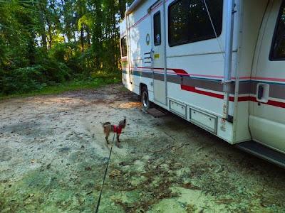 Colleton State Park in South Carolina