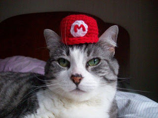 Funny cat picture with cat hat super mario bros