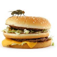 hewan yang kita makan
